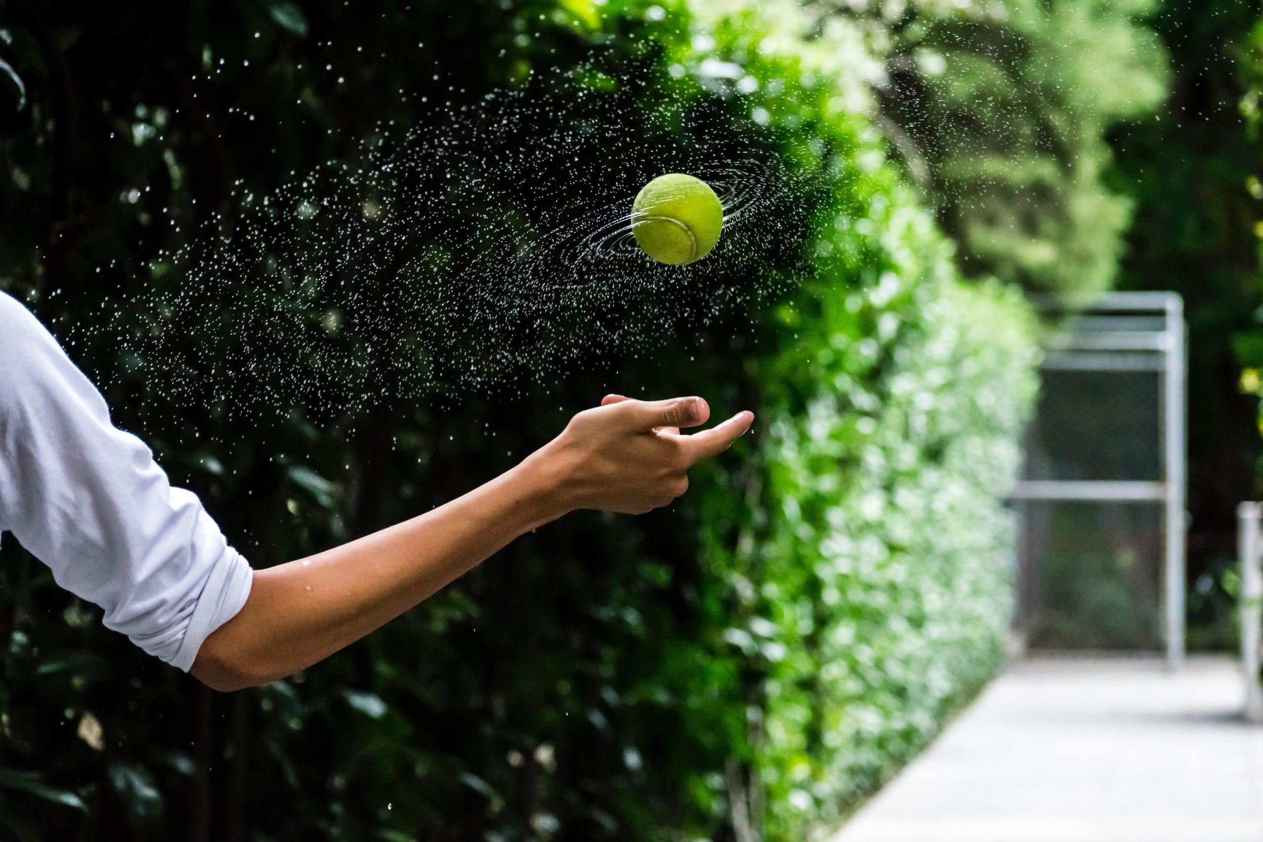 Enter Wimbledon